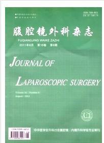 腹腔镜外科杂志.jpg